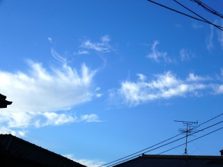 2010_11_03_001