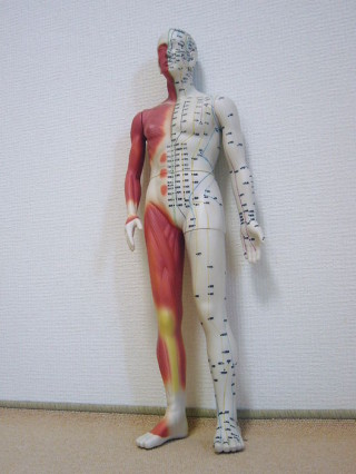body_front