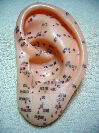 ear_acupuncture_points