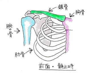 shoulder_001
